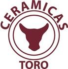 Large logo ceramicas
