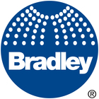 Large bradley logo pantone 287cp bridge