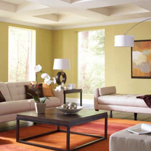 Interior and Exterior Paints - Emerald / Sherwin Williams