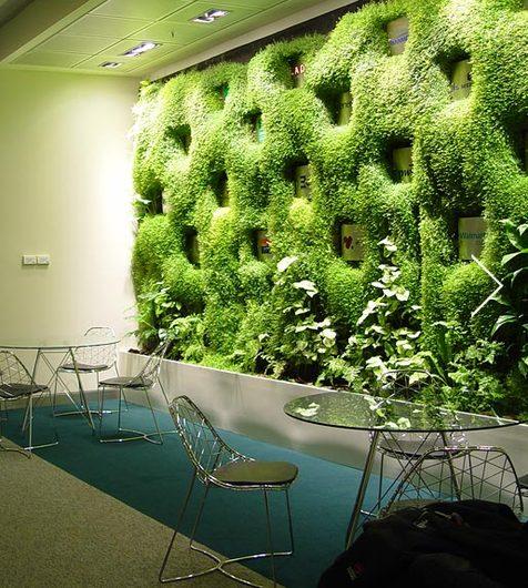Muro verde jardin vertical de verde 360 for Plantas verticales de interior