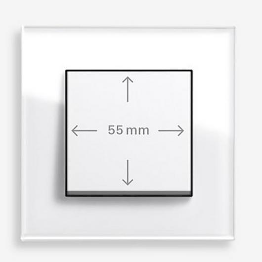 Switchplates - Gira System 55