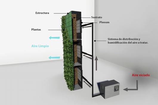 Jard n vertical descontaminante canevaflor de hidrosym for Sistema de riego jardin vertical