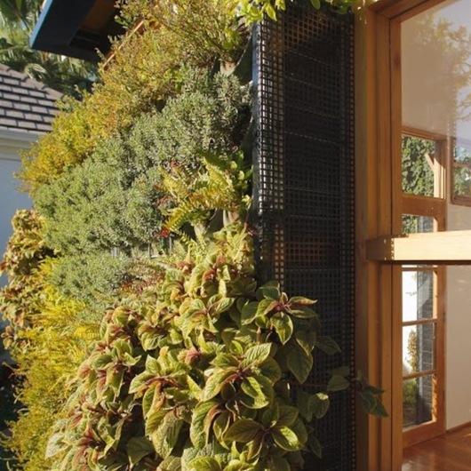 Jardines verticales Intensivos y Extensivos Canevaflor®
