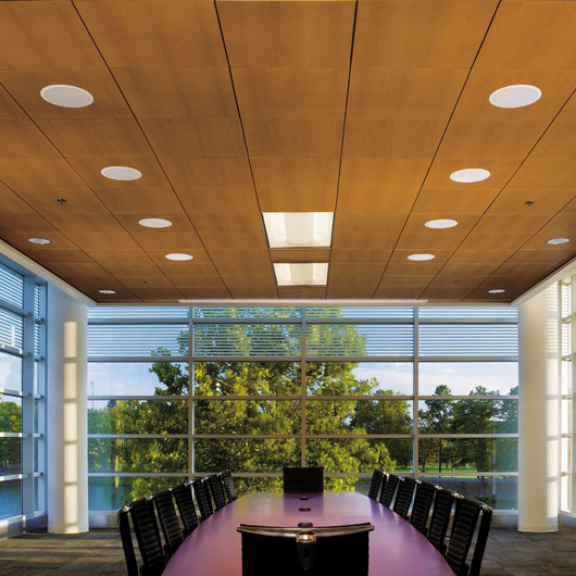 Sistemas de Plafón WoodWorks® Tegular y Vector