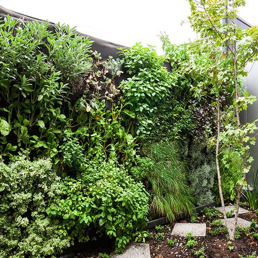 Huerta vertical hidropónica