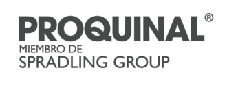 Large logo pqn en gris 02   horizontal