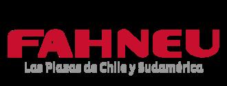 Large logo fahneu