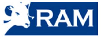 RAM Windows