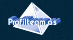 Profilteam