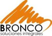 Large bronco logo