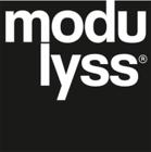 Large modulyss