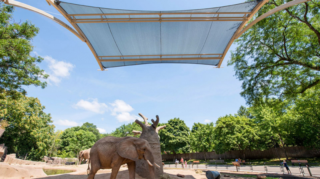Shade Structures at Milwaukee County Zoo