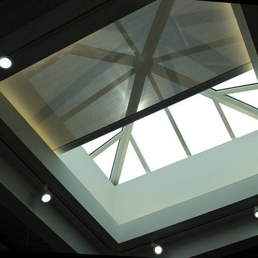 SkyLight FlexShade® / Draper