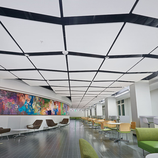 Soundscapes® Shapes Nubes y Soundscapes® Marquesinas / Armstrong Ceilings