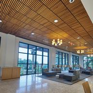 WoodWorks® Linear Sistema de Plafón