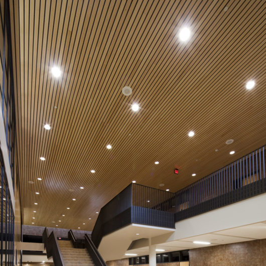 Metal Ceilings Woodwright Box Series Interior From