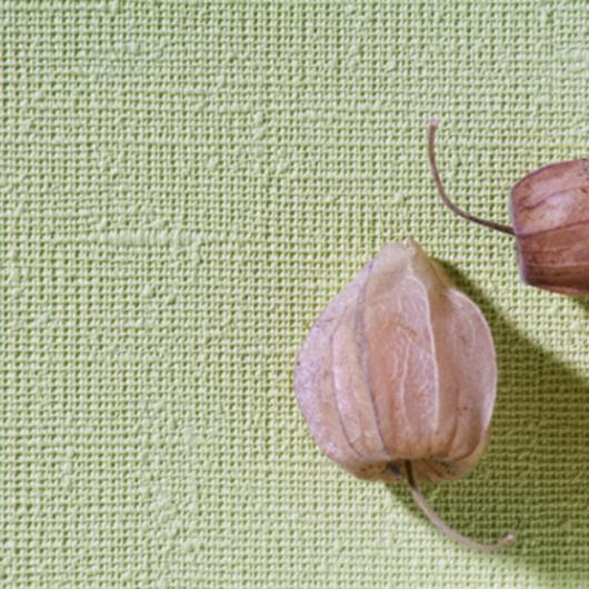 Papeles Murales Colección Arte / Carpenter