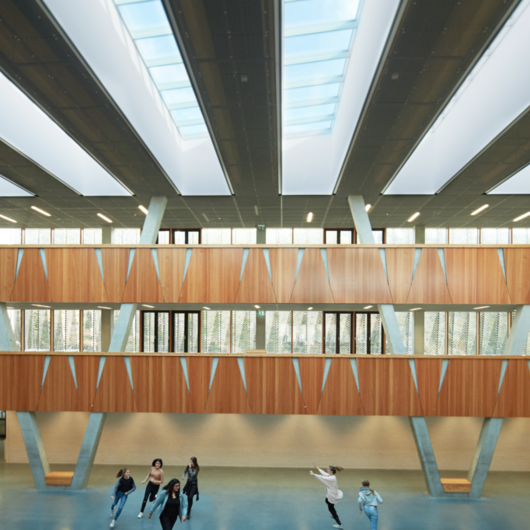 Skylights - Hessenwald Co-operative School / VELUX Commercial