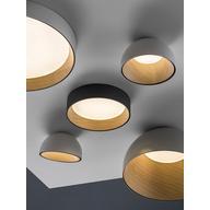 Ceiling Light - Duo