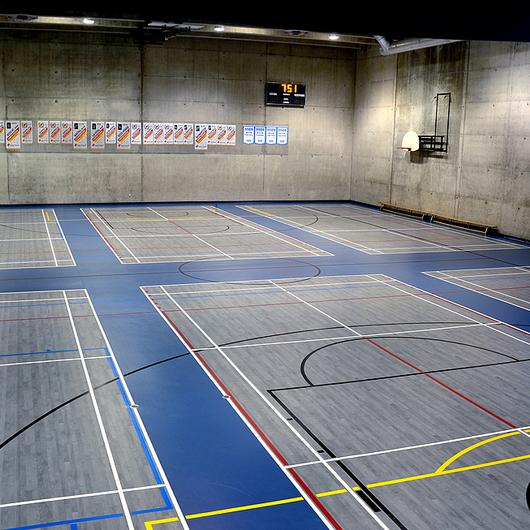Omnisports 5.5mm Gym Floor
