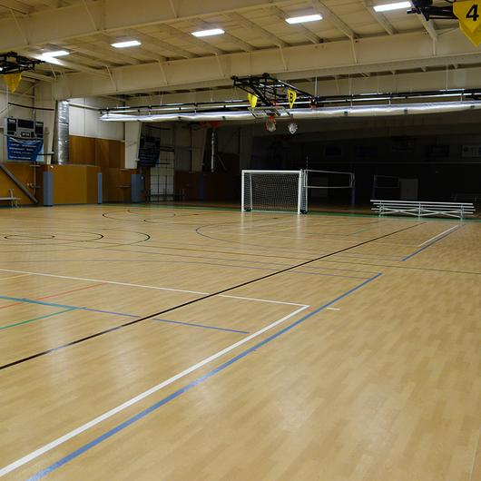 Omnisports 3.5mm Gym Floor