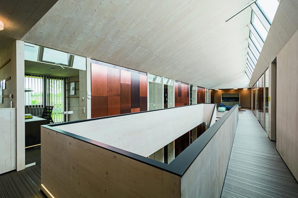 Interior Wood Stain - Lignosil®-Inco