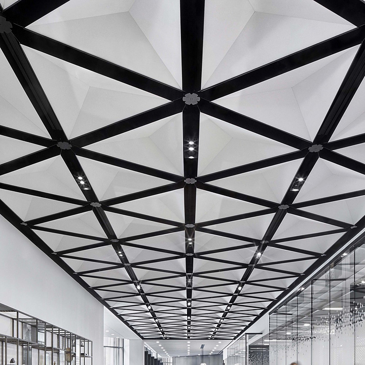 TriSoft Acoustic Ceilings