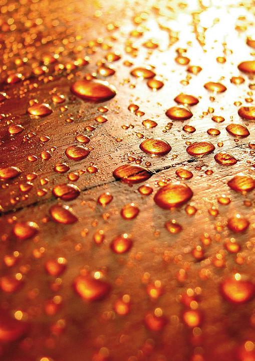 Protector de humedad para madera - Osmo Wood Protect