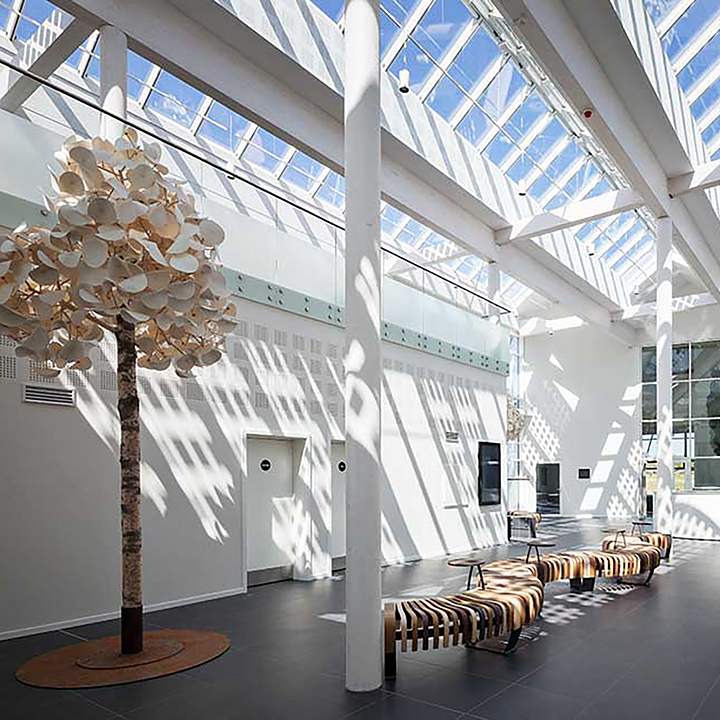 VELUX Modular Skylights in Green Solution House