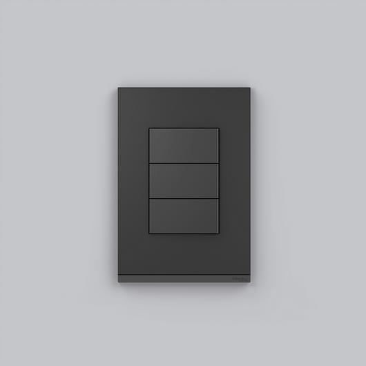 Placa 4x2 3P/ALU para interruptores e tomadas - Graphite Fenix / Schneider Electric