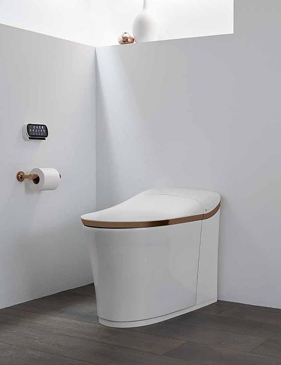 Intelligent Toilets