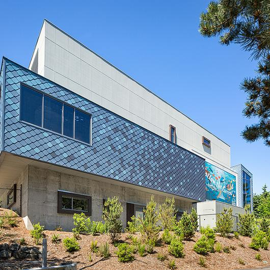 Marine Blues Metal Cladding  on Point Defiance Zoo & Aquarium (PDZA)