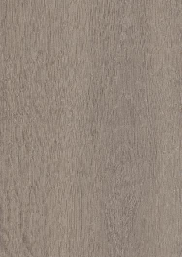 Wolfback Oak