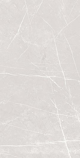 Gray 31x61