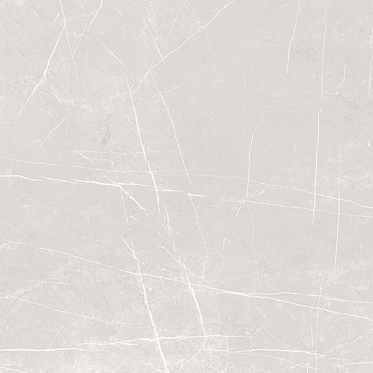 Gray 60x60