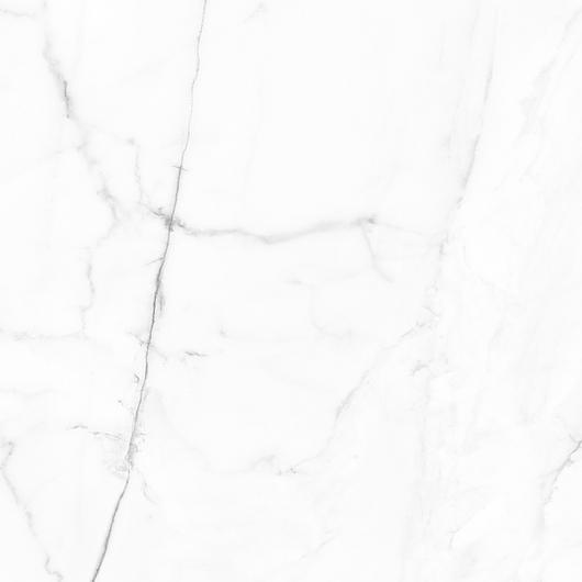 Vivid Tile | White Calacatta - Pulido