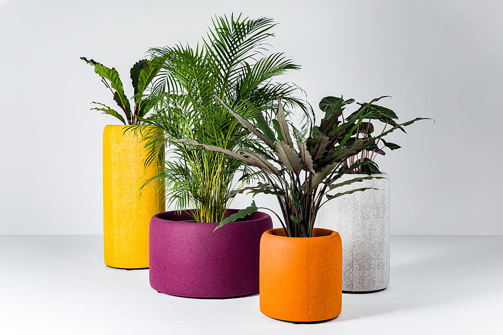Acoustic Planter - BuzziPlanter