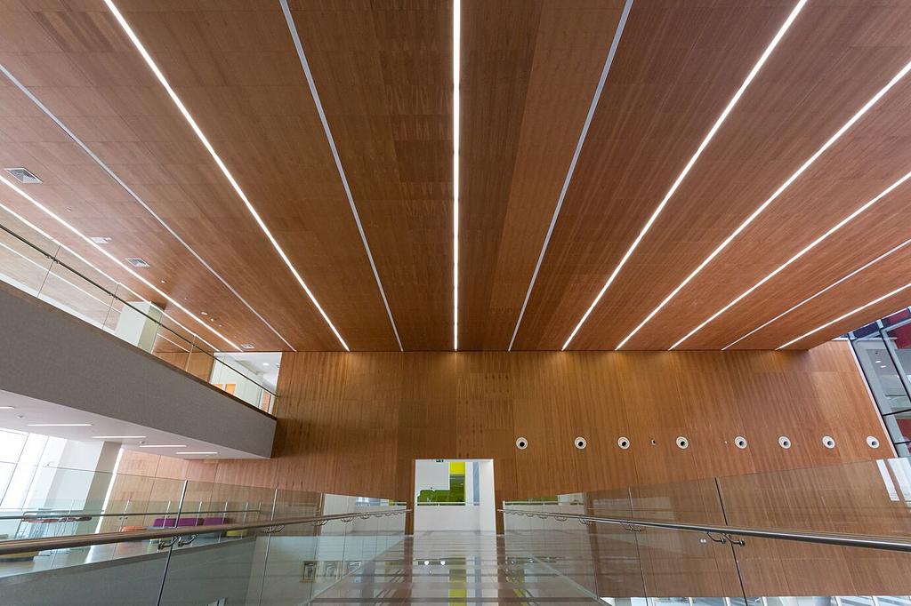 Wood – Veneered Wood Ceiling & Wall Panels