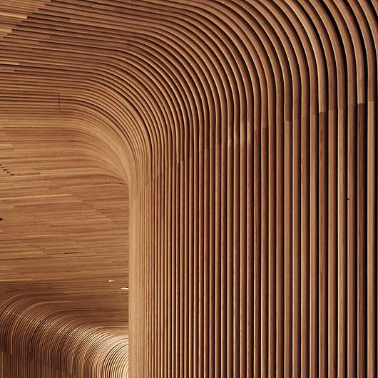 Sculptform Curved Timber