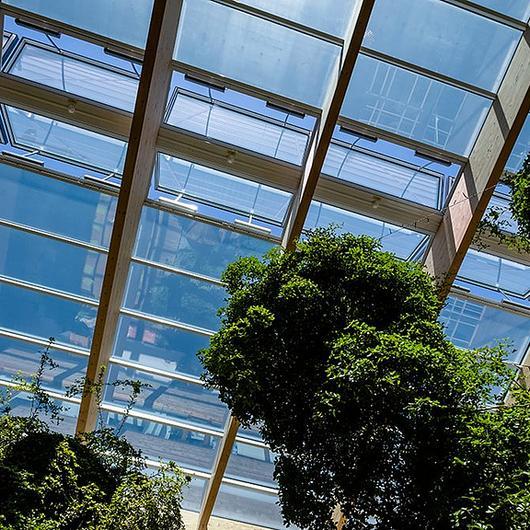 Glass Roof PR60
