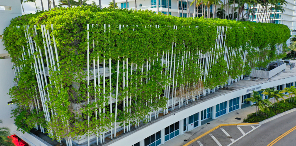 Six Ways a Greening Improves Architecture