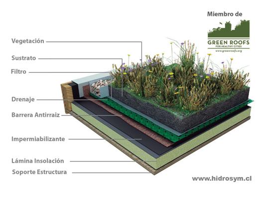 Dise o de techos verdes de hidrosym for Techos y paredes verdes