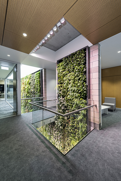 Horticultural Luminaire - Kobe Flo