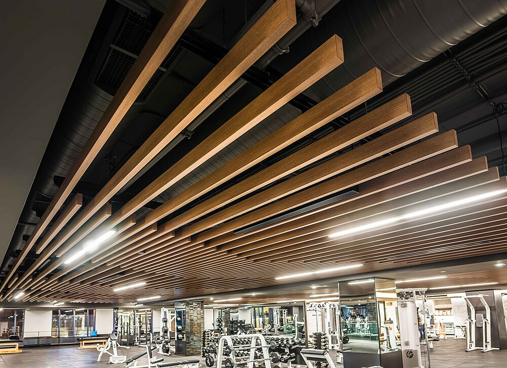 Metal Ceilings - Dauntless
