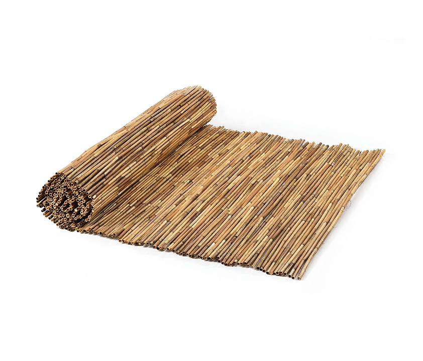 Reeds - Tai Reed Canes