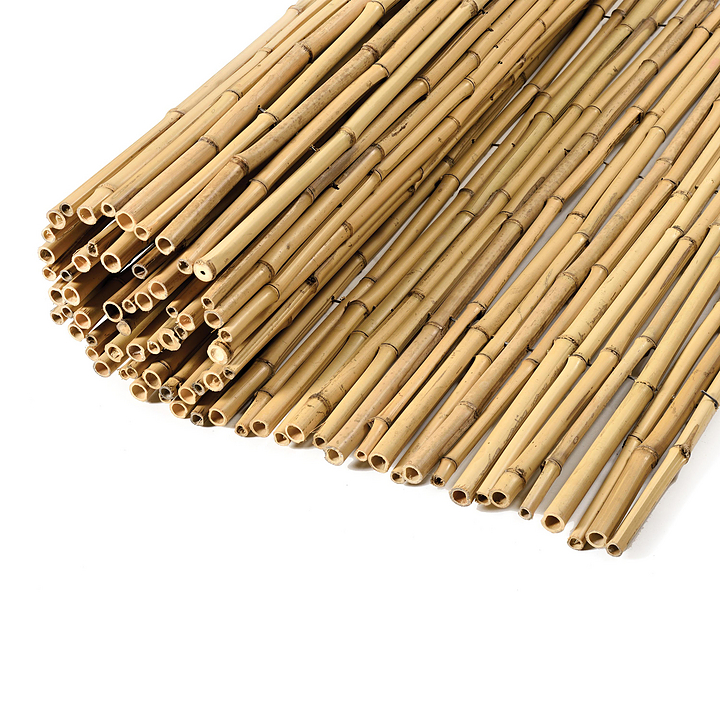 Bamboos - Natural Bamboo