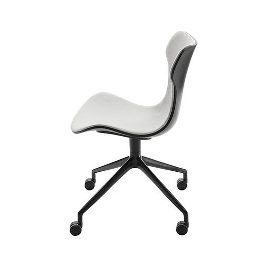 Chair - Papilio Shell / B&B Italia
