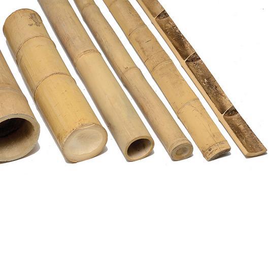 Poles - Bamboo Duan