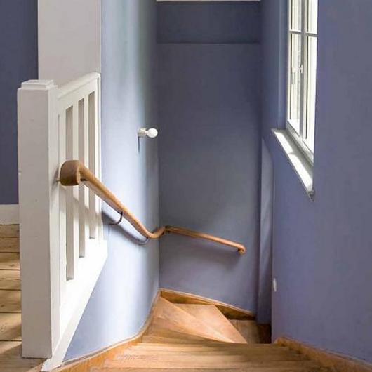 Sistema para prevención y saneamiento de mohos en interiores / Nuprotec