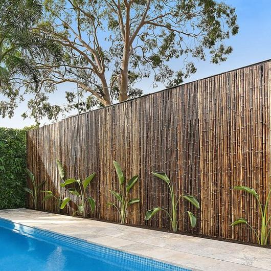 Privacy Screens - Bamboo